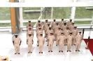 Class 117 Chiefs 2010_2